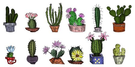 bright cacti in pots. home plants from a greenhouse with flowers. vector doodle