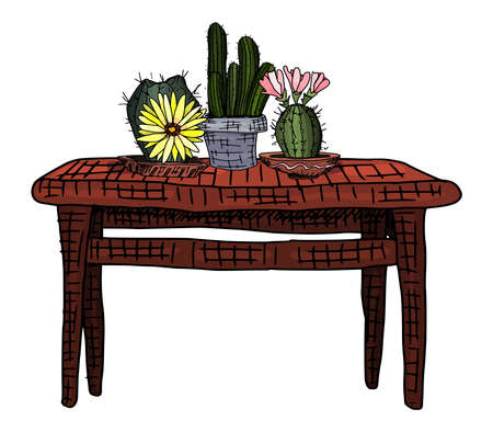 plants in clay pots. cacti on the table. doodle style vector