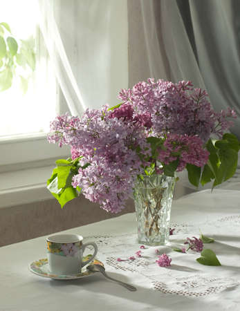 purple lilac: morning