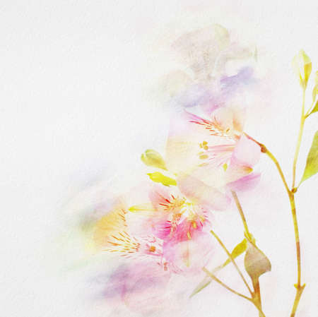 floral background with watercolor flowers    photo