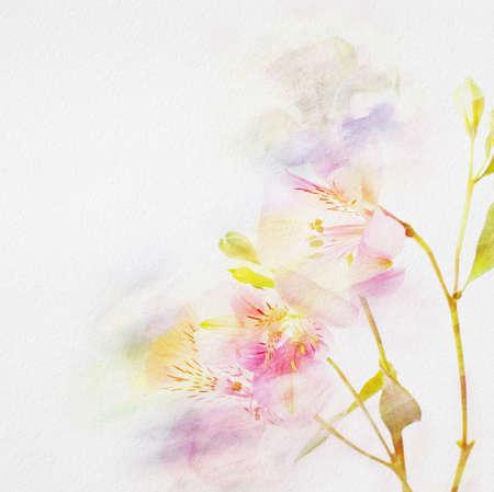 virágos háttér akvarell virágok
