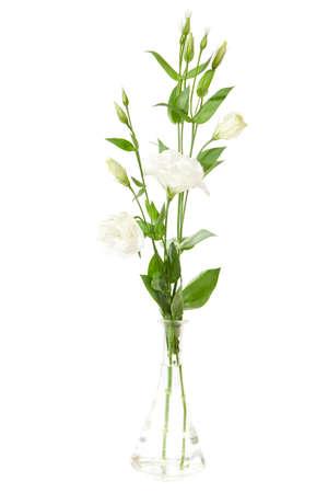 Vase of flowers isolated on white. eustoma photo