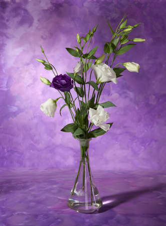 glass vase: bouquet of spring purple Lilac in a vase. Still life Stock Photo