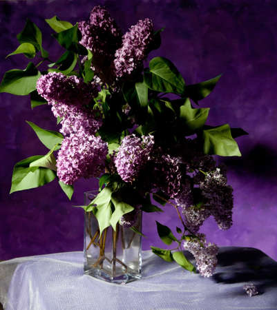 bouquet of spring purple Lilac in a vase  Still life photo