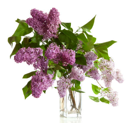bouquet of spring purple Lilac in a vase isolated on a white background  photo
