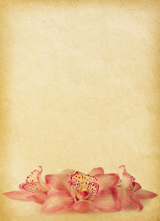 vintage paper textures with orchids. Stock Photo