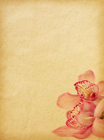 régi papír textúrák az orchideák.
