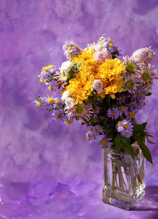 colorful chrysanthemums bunch on abstract background photo