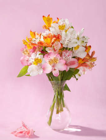 Bouquet of Alstroemeria in a transparent glass vase on pink background photo