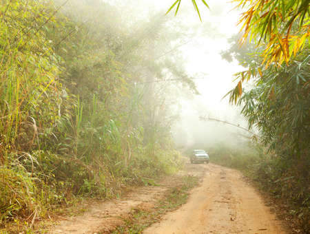 Ground road in jungle near Umphang. Tak Province in northwestern Thailand. January. photo
