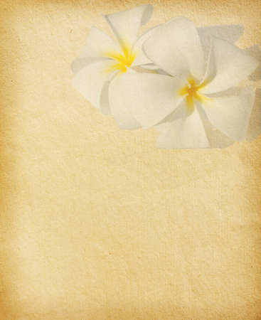 vintage  paper with tropical flowers  Plumeria photo