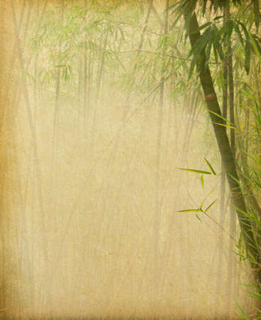 grunge paper with branches of a bamboo Imagens