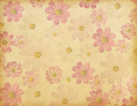 old paper background with cosmea flowers photo