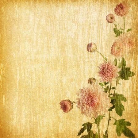 pink chrysanthemum on a grunge wood background