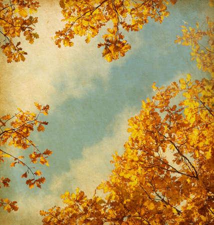 imagen Papel retro de las hojas de otoño en el fondo del cielo Foto de archivo