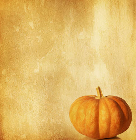 old paper with pumpkin  photo