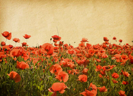 paper textures with poppies photo