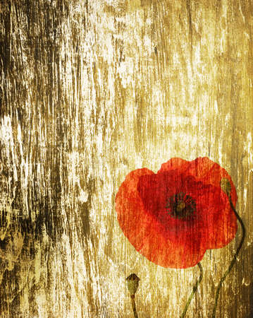 red poppies on a grunge wood background photo