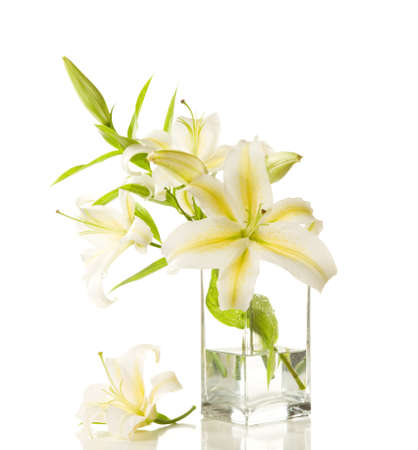 glass vase: Bouquet of white lilies in glass vase isolated on white background
