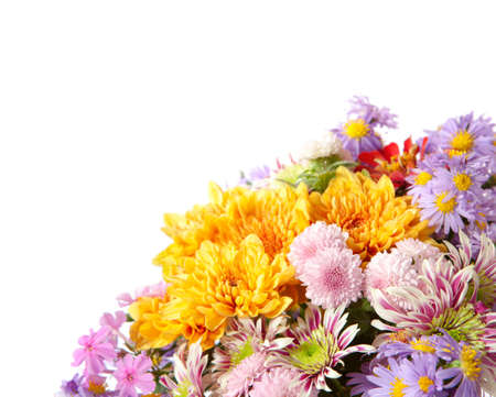 multycolored:  fragment of colorful chrysanthemums bunch isolated on a white background Stock Photo