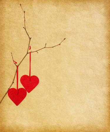 two red hearts, hanging on a branch over the paper background   photo