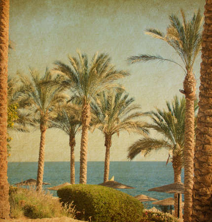 image date: Retro image of  beach    with date Palms amid the blue sea and  sky   Paper texture Stock Photo