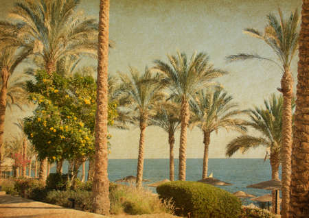 south pacific: Retro image of  beach    with date Palms amid the blue sea and  sky.  Paper texture