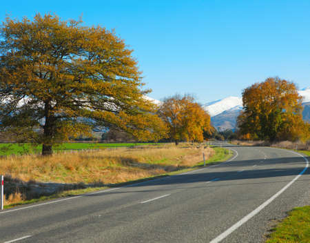 nz:   Autumn road, Canterbury, NZ