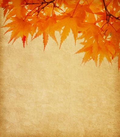 bordure de page: vieux papier avec feuilles d'automne oranges