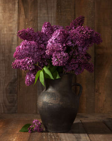 bouquet of spring purple Lilac in clay pot   photo
