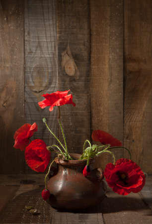 Poppies in clay pot against old wooden wall photo