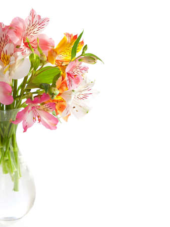Alstroemeria flowers isolated on white background  photo