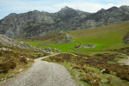 cantabrian: Dirt Road in the Cantabrian Mountains  Picos de Europa , Spain  Stock Photo
