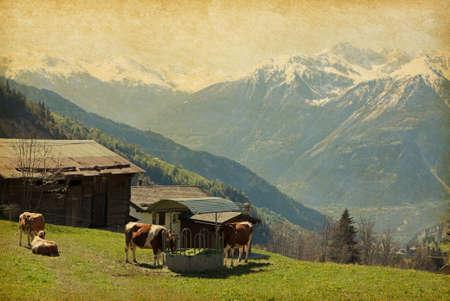 Small farm in Swiss alps.  Bodmen, Valais, Switzerland. Added paper texture photo