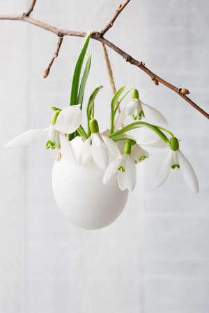 ホワイト木製ボードに卵の殻の snowdrops の束。   浅い被写し界深度、近くの花に焦点を当てる。イースター装飾