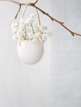 easter flowers: Bunch of of white babys breath flowers (gypsophila) in egg shell on the white wooden plank. Shallow depth of field, focus on near flowers. Easter decor