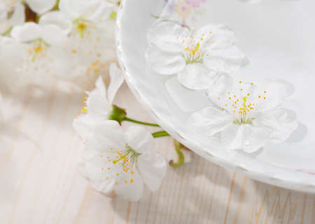 relaxation background: Floating flowers ( Cherry blossom) in white bowl. Focus on near flower