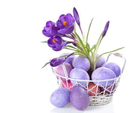 branche: Nature morte de Pâques avec des oeufs et des fleurs colorés (Crocus) isolé sur fond blanc. Banque d'images