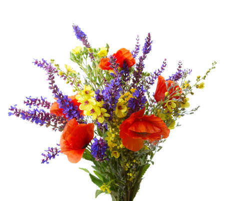 yellow wildflowers: Colorful bouquet of red  poppies  and another  wildflowers (meadow sage, black mullein) isolated  on white.