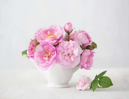 flowers in vase: Pink flowers (rose) on light grey  background. Stock Photo