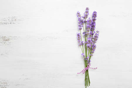 sprigs: Bundle of lavender on old wooden board painted white. Stock Photo