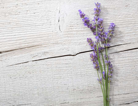 scuff: Few sprigs of lavender on an old wooden background