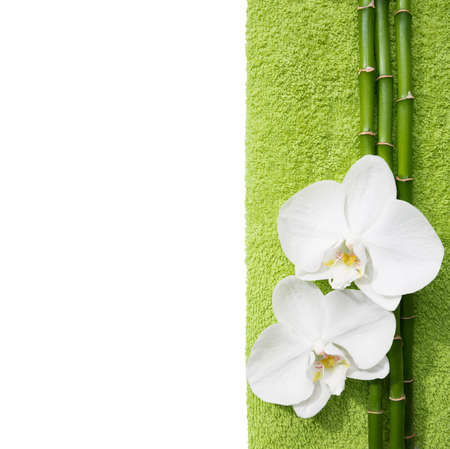 terrycloth: Two  orchids and branches of bamboo  lying on light  green terry towel. Isolated  background. Viewed from above. Spa concept.