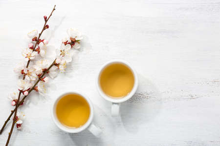 Two cups of green tea and  branches of blossoming apricot  on  old wooden shabby background Imagens - 73004767