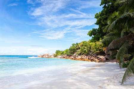 Beautiful tropical  sand beach with granite rocks and coconut palm trees.  La Digue, Seychelles.