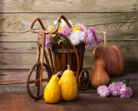 Pumpkins and  Chrysanthemums bunch against the background of old wooden wall. Stock Photo