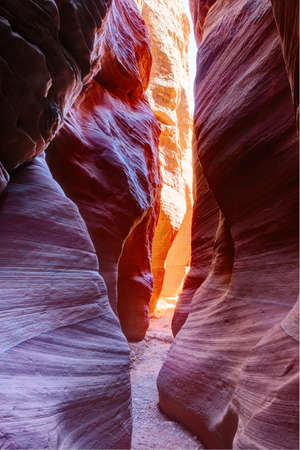 Narrow slot canyon Wire Pass leading into Buckskin Gulch, Paria Canyon-Vermilion Cliffs Wilderness,  near the Utah-Arizona border, southern Utah, United States.