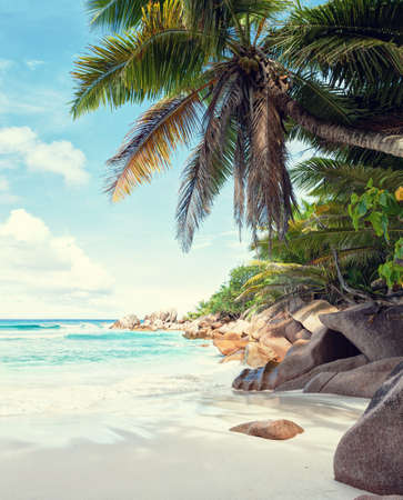 Beautiful white sandy beach surrounded by granite rocks and coconut palm trees.  La Digue, Seychelles.  Toned image. Stock Photo