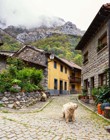 Small winding Street with old typical houses in a cloudy spring day, Cain de Valdeon, Picos de Europa,  Castile and Leon, Spain.