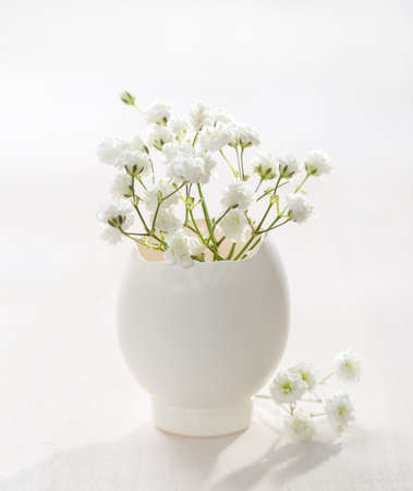 Bunch of white Babys Breath flowers (Gypsophila) in eggshell on the white wooden plank. Shallow depth of field, focus on near flowers. Easter decor